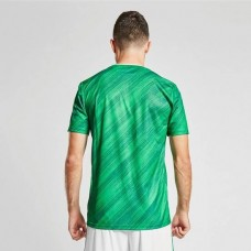 Northern Ireland 2020 2021 Home Shirt